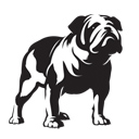The Bulldog Trust