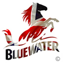 BLUEWATER- Brand intentity
